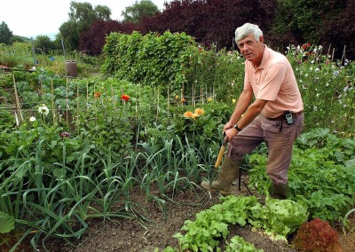 Gardening Talk with Terry Walton