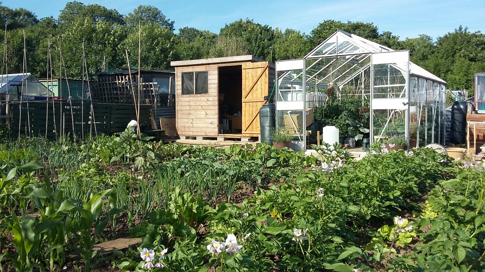 A Talk for Gardeners & Allotmenteers!