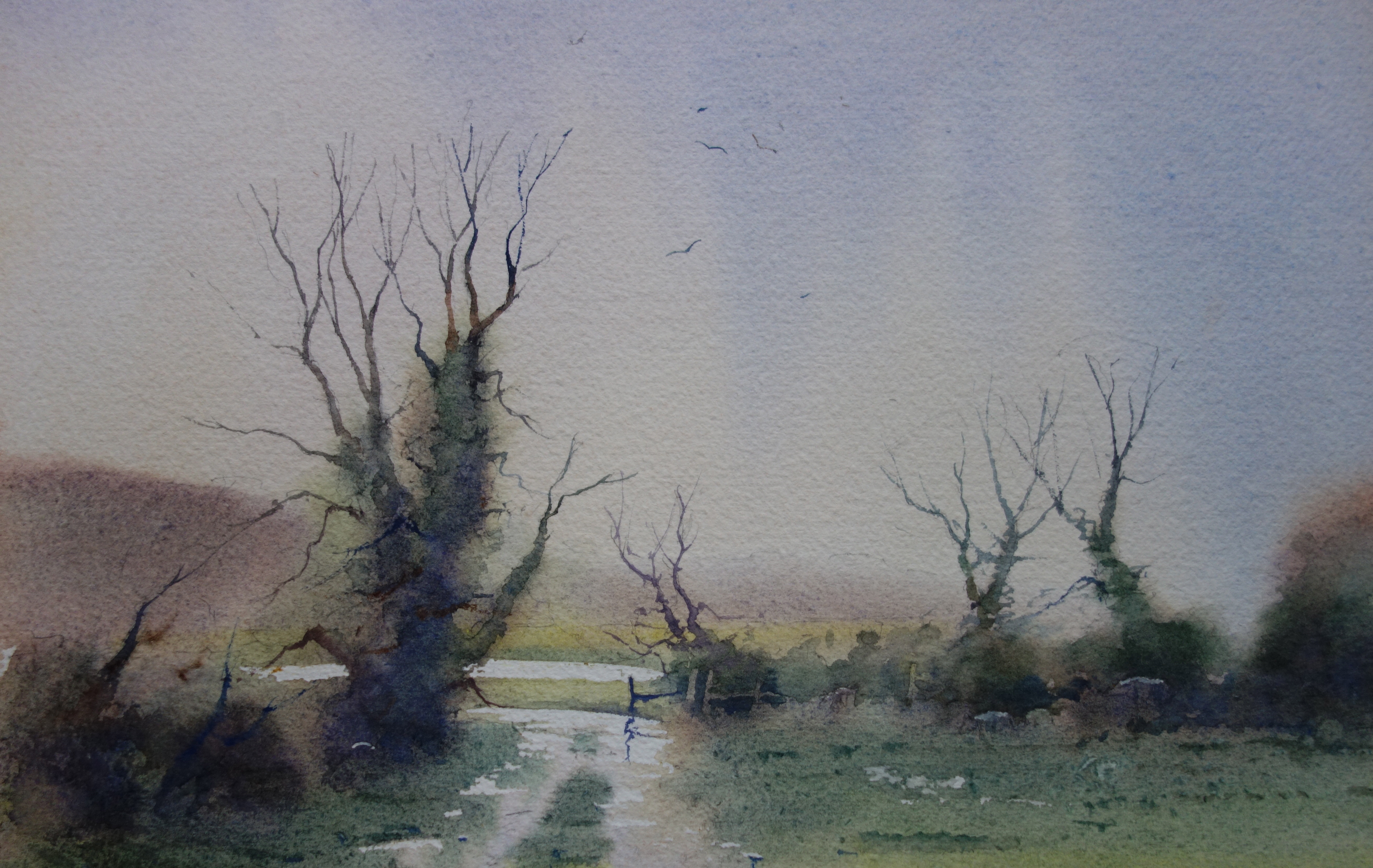 Watercolour Workshop with Peter Cronin